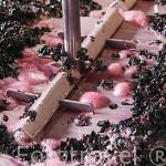 Pisado automatizado de la uva en los lagares de la empresa Sandeman. Quinta do Seixo. Cerca de REGUA. Valle del Duero. Portugal