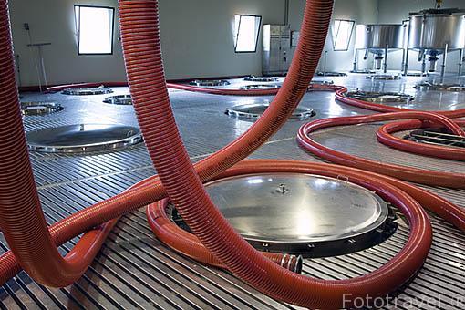 Recipientes de acero inoxidable para almacenar la uva. Empresa Sandeman. Quinta do Seixo. Cerca de REGUA. Valle del Duero. Portugal