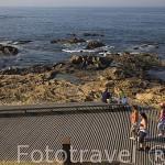Paseo maritimo junto a la avenida de Montevideo. Ciudad de OPORTO. Portugal