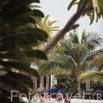 Piscina. Hotel Lamantin Beach. En Saly. Senegal. Africa