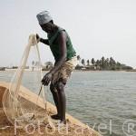 Pescador en un canal del delta del Saloum. Senegal. Africa
