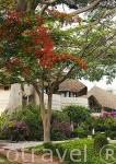 Hotel Delta Niominka. Delta del Saloum. Senegal. Africa