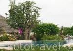 Piscina. Hotel Delta Niominka. Delta del Saloum. Senegal. Africa