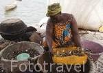 Una mujer abriendo las conchas de bivalvos. Son esenciales en la población de Falia. Delta del Saloum. Senegal. Africa