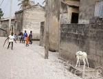 Poblacion de Dionewar. Delta del Saloum. Senegal. Africa