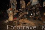 Cuerno de Elan. Amuleto ceremonioso de muchos luchadores. Delta del Saloum. Senegal. Africa