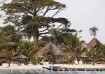 Piraguas de pescadores frente al hotel Delta Niominka. Rio y delta de Saloum. Isla de Dionewar. Senegal. Africa