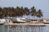 Población de Djiffer junto al rio y delta de Saloum. Senegal. Africa
