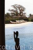Piscina. Hotel Le Royal Lodge. En Palmarin Mbour.Delta del Saloum. Senegal. Africa