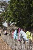 Las viviendas se protegen mediante vallado hecho de palmeras. Aldea Leona y chozas. Delta del Saloum. Senegal. Africa