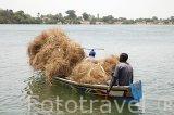 Transportando paja en piragua. Delta del Saloum. Senegal. Africa