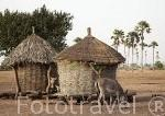 Graneros para guardar el mijo en la aldea de Keur Diatta. Delta del Saloum. Senegal. Africa