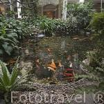Patio interior. Hotel Four Seasons. BANGKOK. Tailandia