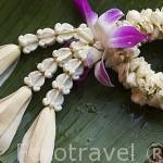 Colgante hecho a base de diferentes tipos de flores. Tailandia