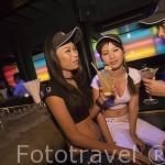 Chicas en el bar - discoteca Q-Bar en la calle Sukhumvit. Ciudad de BANGKOK. Tailandia