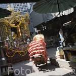 Mercado Pak Kkhlong Talad. Ciudad de BANGKOK. Tailandia