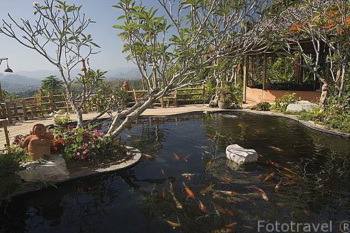 Piscina con vistas del entorno. Hotel Resort Phu Chaisai Mountain. En Mae Chan. CHIANG RAI. Tailandia