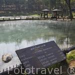 Aguas de manantial a 56 grados. Balneario Hvoy Mag Laem, junto al rio Kok. Chiang Rai. Tailandia