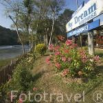 Las cabañas del hotel My Dreams junto al rio Kok. Chiang Rai. Tailandia
