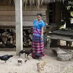 Chica de la tribu de montaña Karen Pakayaw. Poblado de KEAW VUA DAM. junto al rio Kok. Chiang Rai. Tailandia