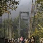 Chicas atravesando un puente de madera. Donacion del gobierno japones al pais. Poblado de KEAW VUA DAM. junto al rio Kok. Chiang Rai. Tailandia