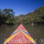 Embarcacion navegando sobre el rio Kok. Chiang Rai. Tailandia