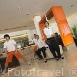 Actuacion diaria. Hotel moderno D2. CHIANG MAI. Tailandia