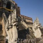 Dragones (Naga) en el templo de budista Wat Chedi Luang VARAVIHARN (Data de 1401). CHIANG MAI. Tailandia