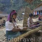 Chicas tejiendo bambu para colocar en los tejados de las viviendas. Tribu de montaña Karen Padong (Long neck). Poblado de BAN MAINAI SOI. Mae Hong Son. Tailandia