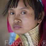 Una chica de la tribu de montaña Karen Padong (Long neck). Poblado de BAN MAI NAI SOI. A 35km de Mae Hong Son. Tailandia