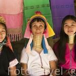 Familia de la tribu de montaña Karen Padong (Long neck). Poblado de BAN MAI NAI SOI. A 35km de Mae Hong Son. Tailandia