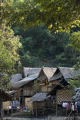 Viviendas con techo de hoja de teca. Tribu de montaña Karen Padong (Long neck). Poblado de BAN MAI NAI SOI. A 35km de Mae Hong Son. Tailandia