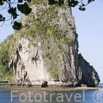 Bahia y playa de HAT PHRA NANG, cerca de Krabi. Tailandia