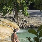 La piscina natural Esmeralda. (Emerald Pool). Cerca de KRABI. Tailandia