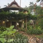 Bungalow del hotel Rayavadee en medio de la vegetación. HAT PHRA NANG. Krabi. Tailandia