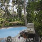 Bungalow y piscina. Hotel Rayavadee. HAT PHRA NANG. Krabi. Tailandia