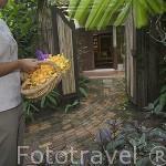 Flores para un bungalow. Hotel Rayavadee. HAT PHRA NANG. Krabi. Tailandia
