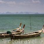 Embarcacion de pescadores de religion musulmana cerca de BAN KO LANTA (BAN SI RAYA, Ciudad Vieja). Isla de Ko Lanta. Tailandia