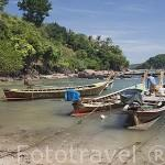 Embarcaciones de pescadores. Pequeño pueblo de gitanos musulmanes cerca de BAN KO LANTA (BAN SI RAYA, Ciudad Vieja). Isla de Ko Lanta. Tailandia