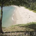 Playas de arena blanca en el Parque Nacional Marino Ko Lanta. Isla de KO LANTA. Mar de Andaman. Tailandia