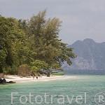 Playas de arena blanca en la isla de KO KRADAN. Mar de Andaman, cerca de Trang. Tailandia