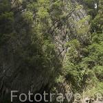 Playa en el interior de la isla que se accede desde el tunel calizo de 80 metros que pasa por la cueva Esmeralda. Isla de KO MUK en Trang. Mar de Andaman. Tailandia