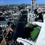 Vista desde la torre del Campanario 1313, (Belfort). Al fondo la iglesia de San Nicolas. Gargolas. GANTE. Belgica