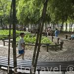 Jardin Zen en el Area de Convenciones Plaza Mayor. (Centro de Exposiciones, teatro, etc). Departamento de Antioquia. MEDELLIN. Colombia