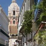 Calle del Landrinal. Al fondo la Basilica Menor. Ciudad Vieja. CARTAGENA DE INDIAS. Colombia