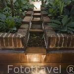 Jardin, planta baja. Hotel Agua. Calle de Ayos,n.4. Ciudad Vieja. CARTAGENA DE INDIAS. Colombia