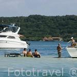 Embarcaciones de recreo. Descanso en las Islas del Rosario. Mar Caribe. CARTAGENA DE INDIAS. Departamento de Bolivar. Colombia