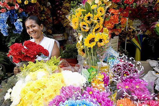 Venta de flores cerca de la calle Daniel Lemaitre. CARTAGENA DE INDIAS. Ciudad patrimonio de la Humanidad, UNESCO. Colombia. Suramerica