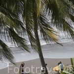 Playa de Sunzal y surfistas. Departamento de la Libertad. El Salvador. Centro américa.