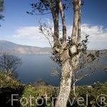 El lago y crater de Coatepeque. El Salvador. Centro américa.
